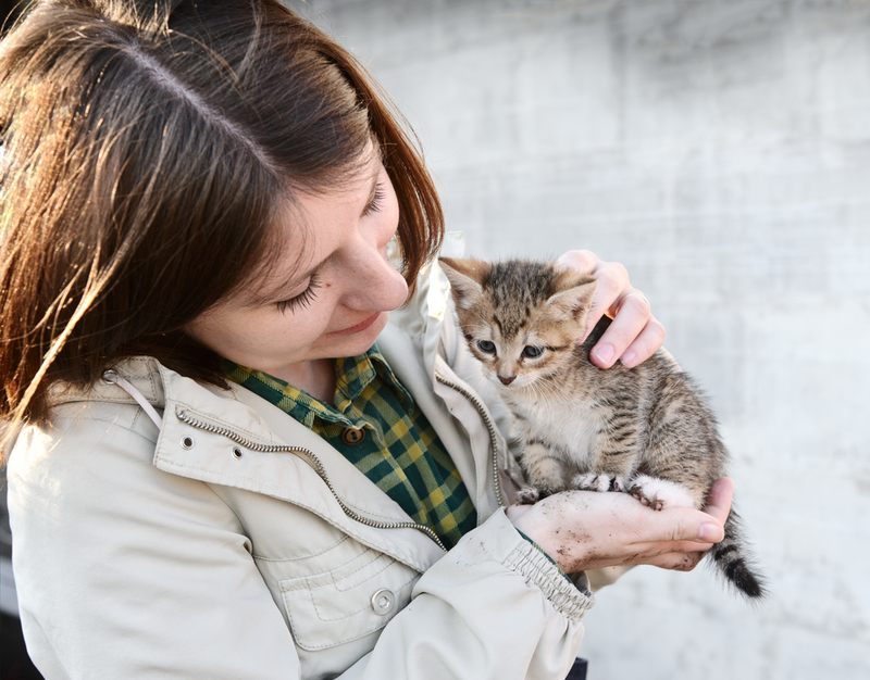 Photo of girl holding a kitten