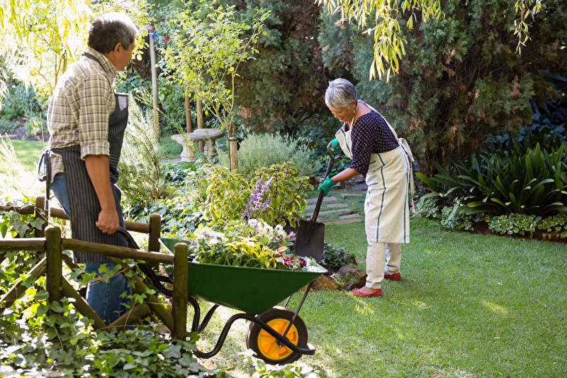 Photo of two people working in the garden